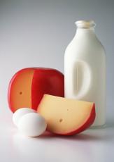 عکس ظرف شیر و پنیر