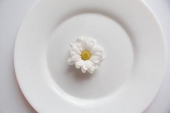 عکس گل مروارید در بشقاب