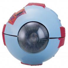 عکس آناتومی چشم