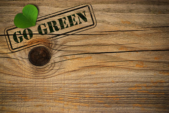 عکس چوب و برگ سبز