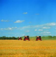 عکس ماشین درو گندم و زمین کشاورزی