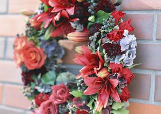 عکس گلهای قرمز تاج گل