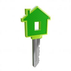 عکس کلید خانه سبز